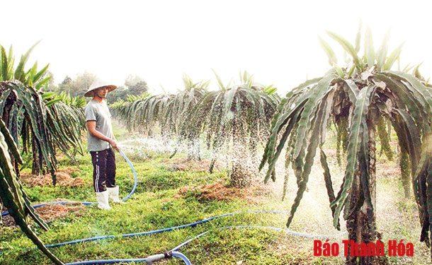 Huyện Thiệu Hóa quan tâm thực hiện Chương trình mỗi xã một sản phẩm.