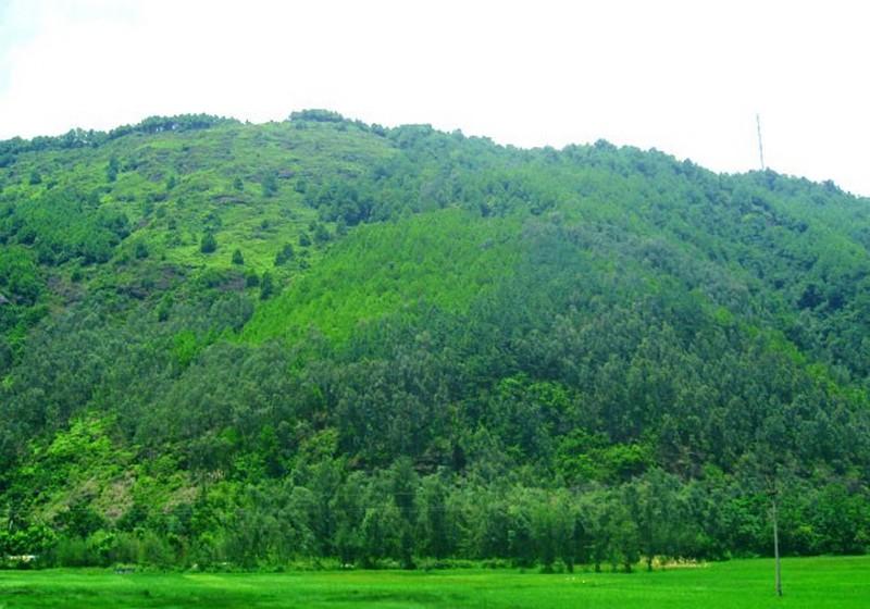 Núi Linh Trường